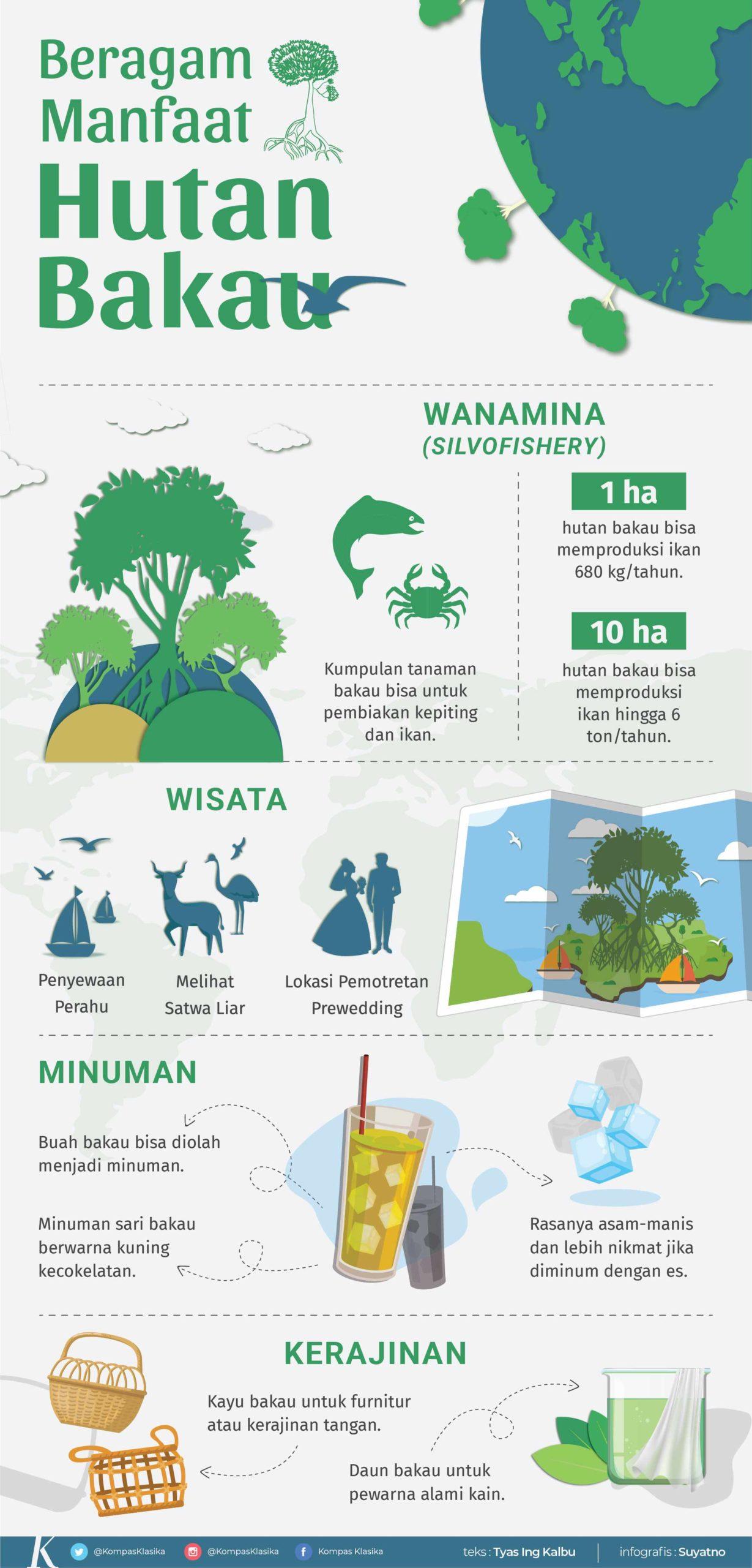 infografik manfaat hutan bakau